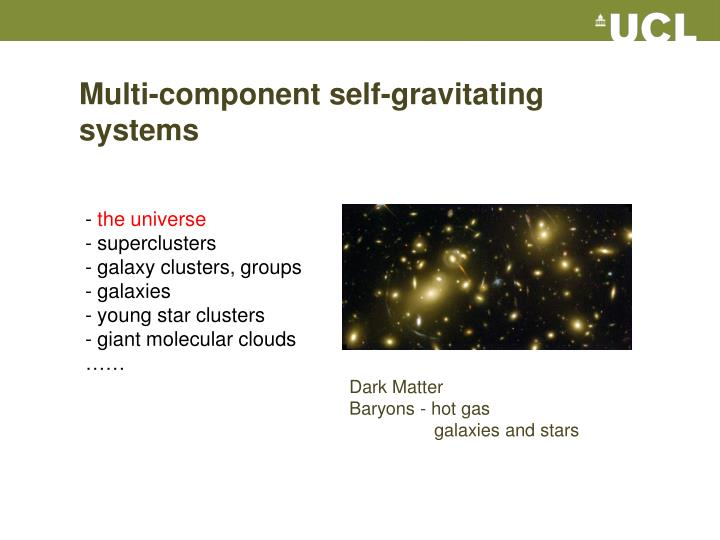 Multi-component self-gravitating systems