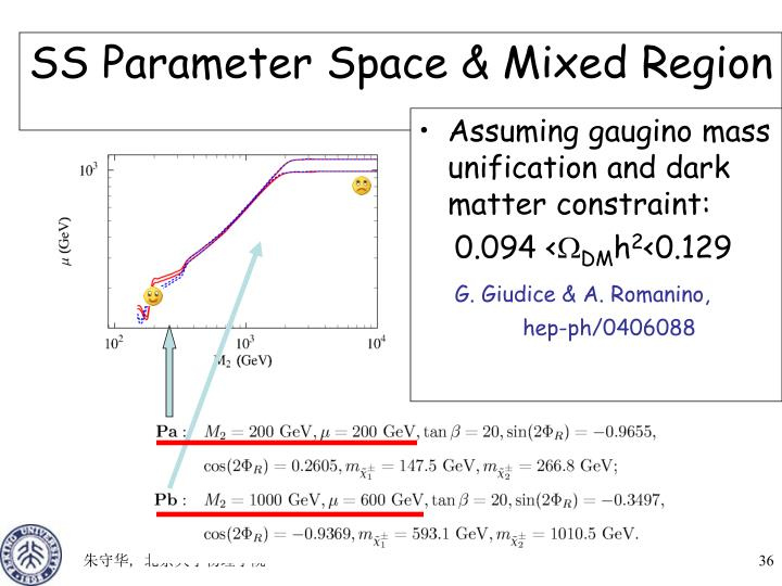 SS Parameter Space & Mixed Region