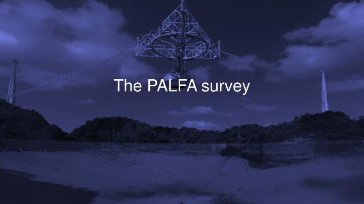 The palfa survey
