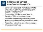 meteorological services in the terminal area msta
