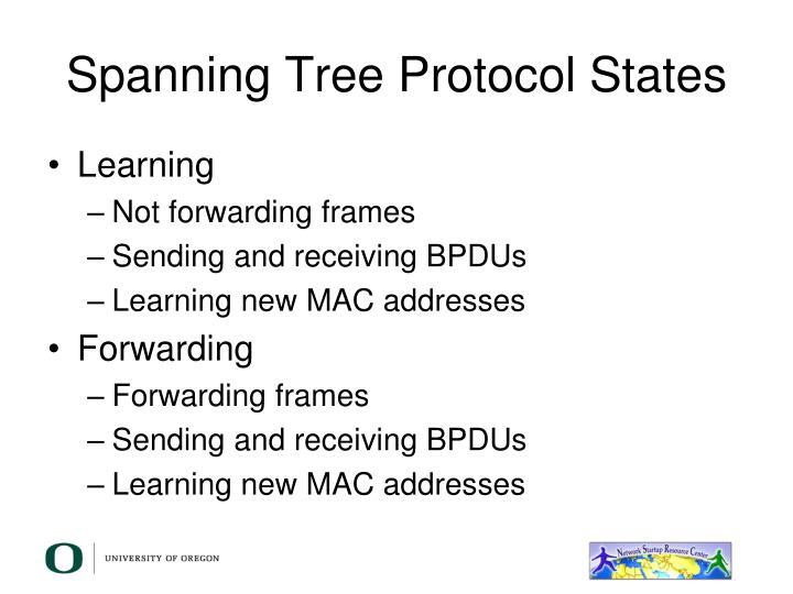 Spanning Tree Protocol States