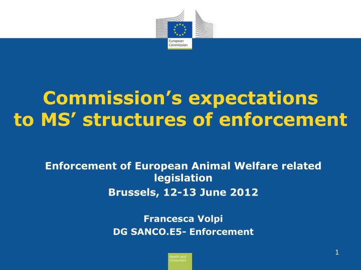 Commission s expectations to ms structures of enforcement