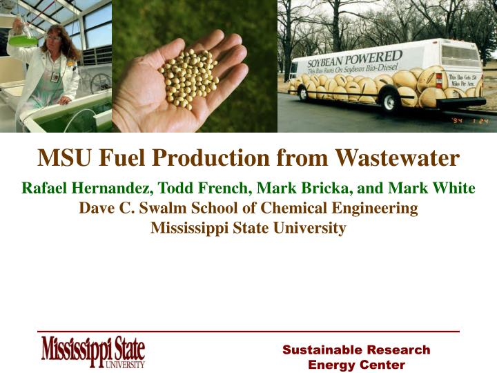 MSU Fuel Production from Wastewater