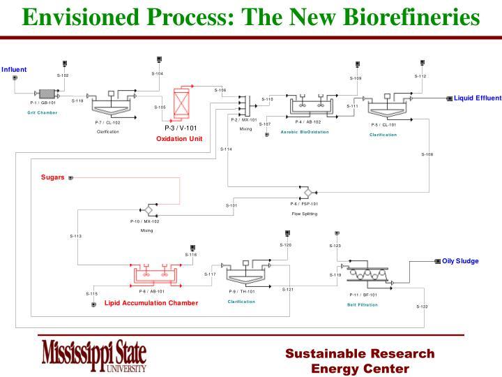 Envisioned Process: The New Biorefineries