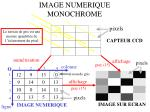 image numerique monochrome