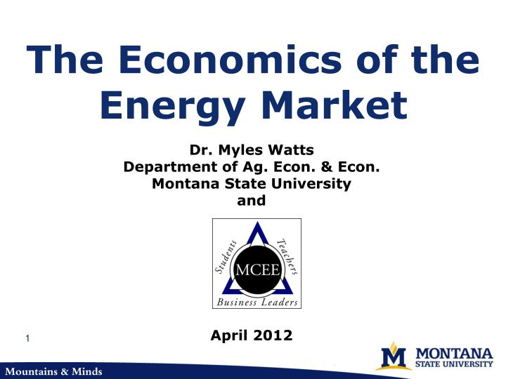 The economics of the energy market