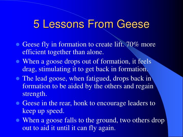 5 Lessons From Geese