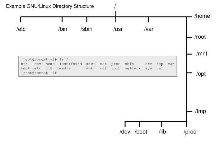 Example GNU/Linux Directory Structure