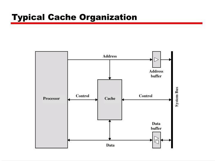 Typical Cache Organization