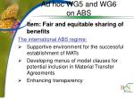 ad hoc wg5 and wg6 on abs