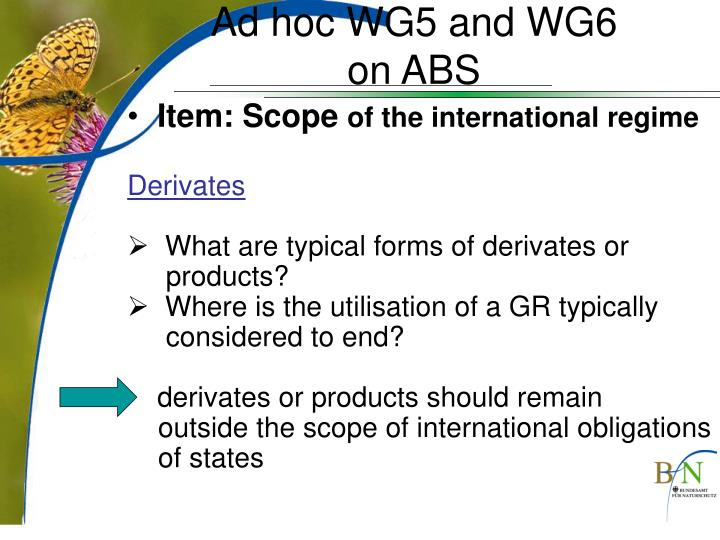 Ad hoc WG5 and WG6