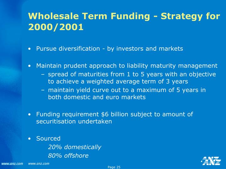 Wholesale Term Funding - Strategy for 2000/2001