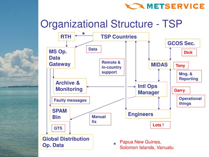 Organizational Structure - TSP