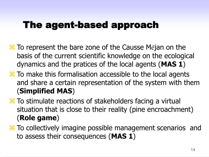 The agent-based approach