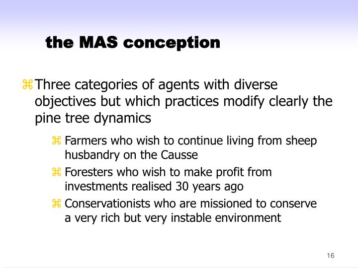 the MAS conception