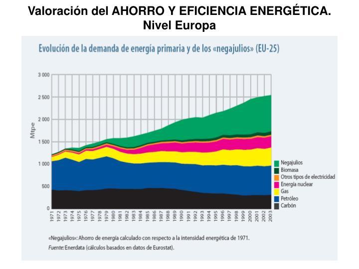 Valoración del AHORRO Y EFICIENCIA ENERGÉTICA.