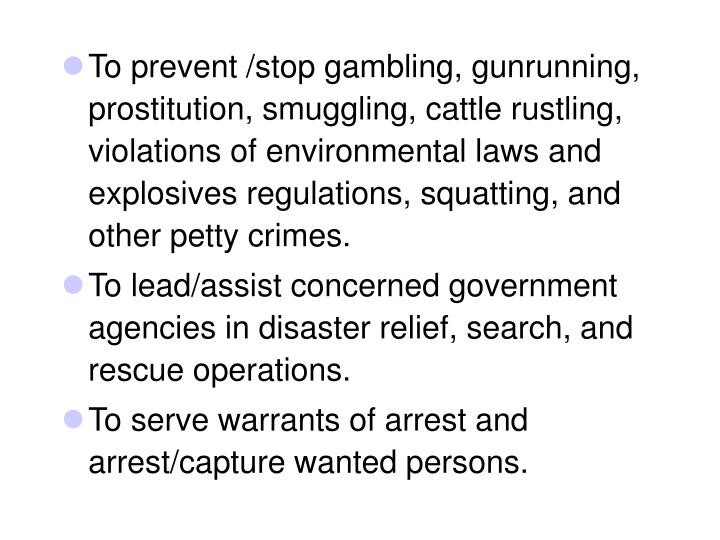 To prevent /stop gambling, gunrunning, prostitution, smuggling, cattle rustling, violations of environmental laws and explosives regulations, squatting, and other petty crimes.