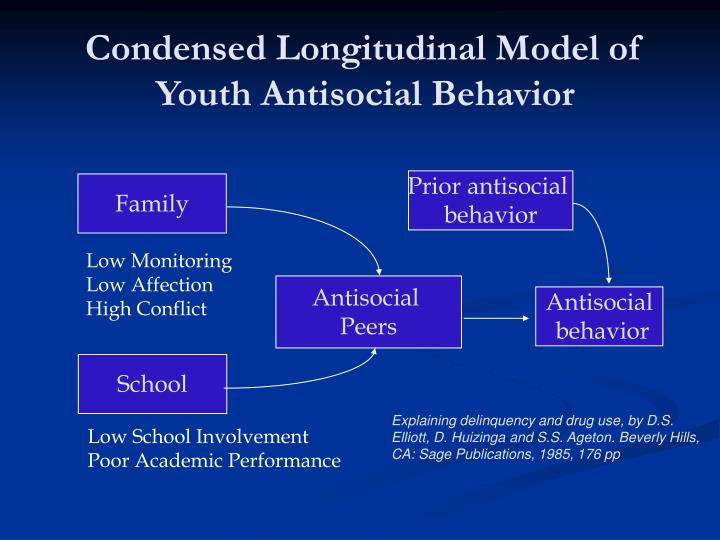 Condensed Longitudinal Model of