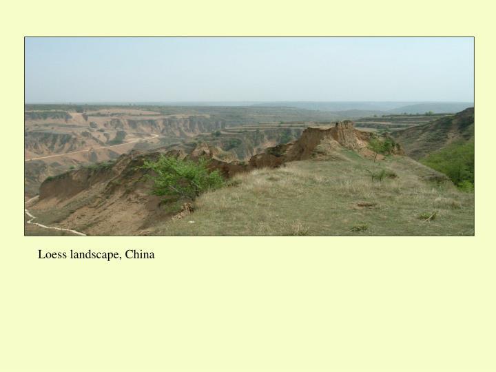 Loess landscape, China