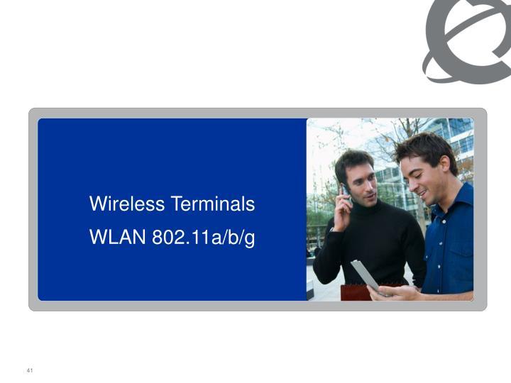 Wireless Terminals