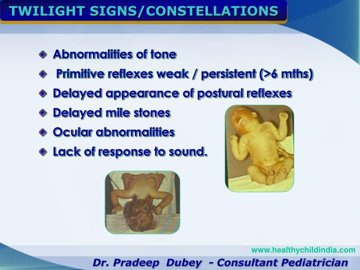 TWILIGHT SIGNS/CONSTELLATIONS