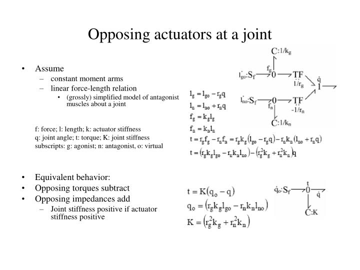 Opposing actuators at a joint