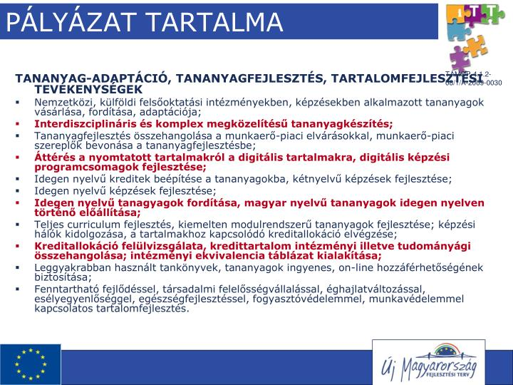 PÁLYÁZAT TARTALMA