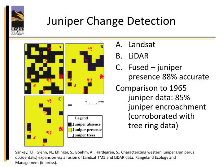 Juniper Change Detection