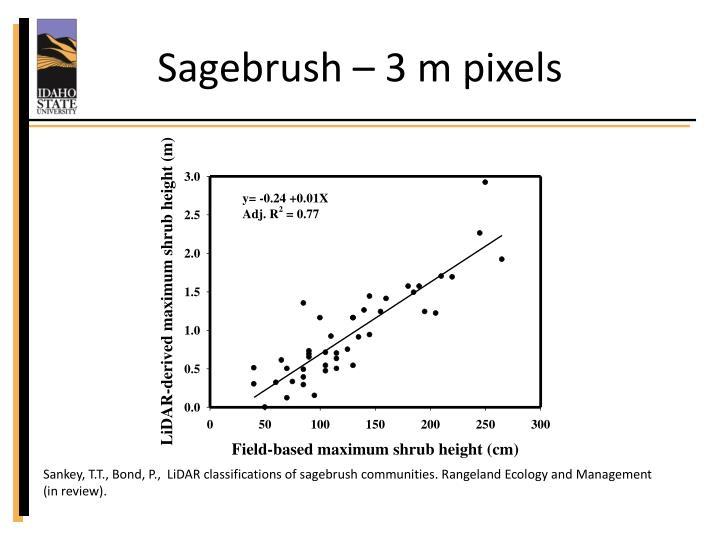 Sagebrush – 3 m pixels