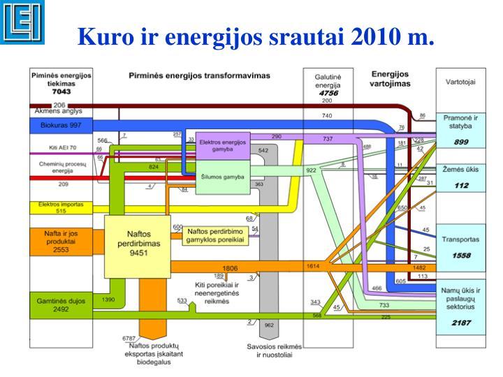 Kuro ir energijos srautai 2010 m.