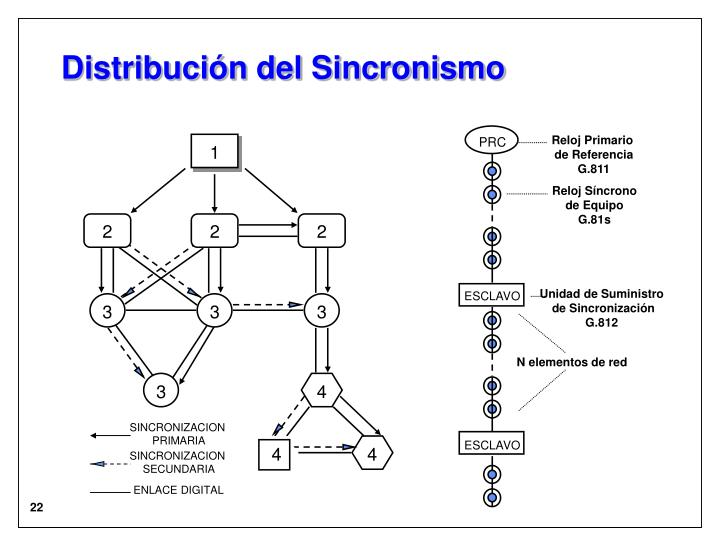 Distribución del Sincronismo