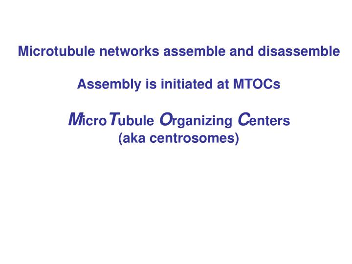 Microtubule networks assemble and disassemble
