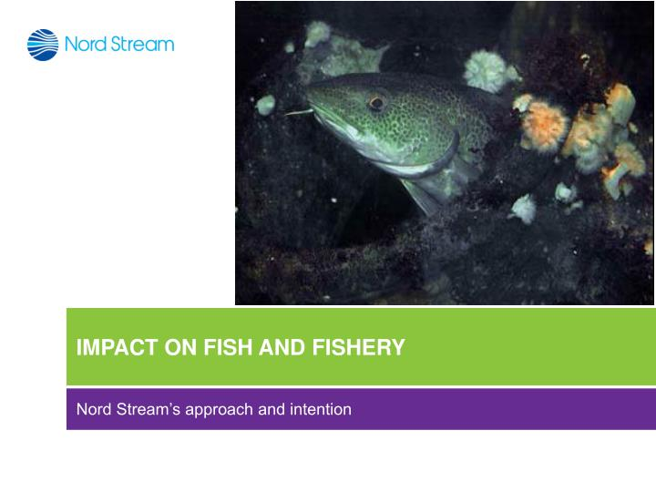 IMPACT ON FISH AND FISHERY