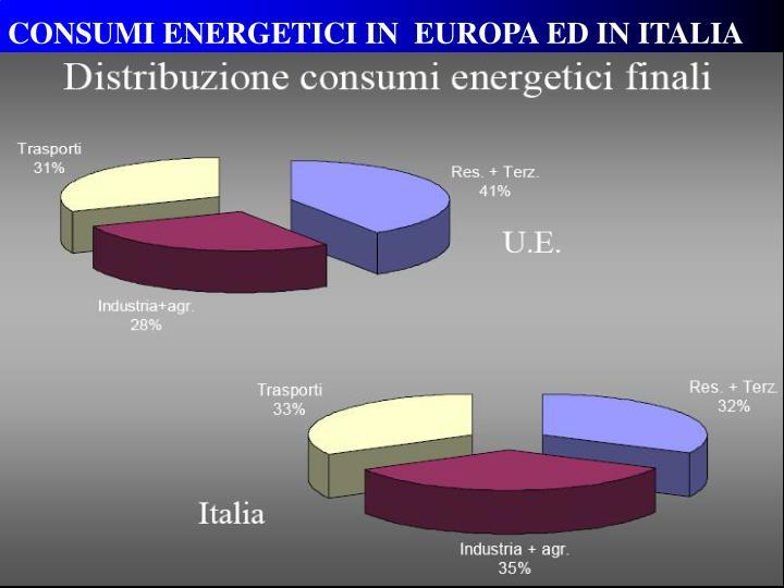 CONSUMI ENERGETICI IN  EUROPA ED IN ITALIA