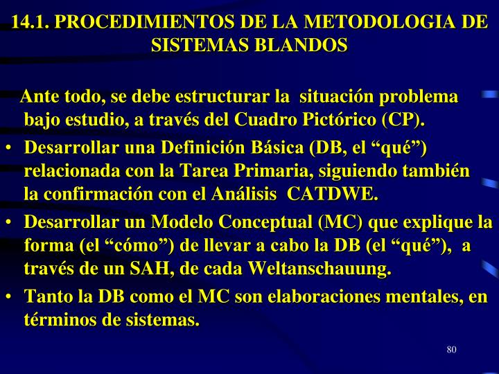 14.1. PROCEDIMIENTOS DE LA METODOLOGIA DE SISTEMAS BLANDOS