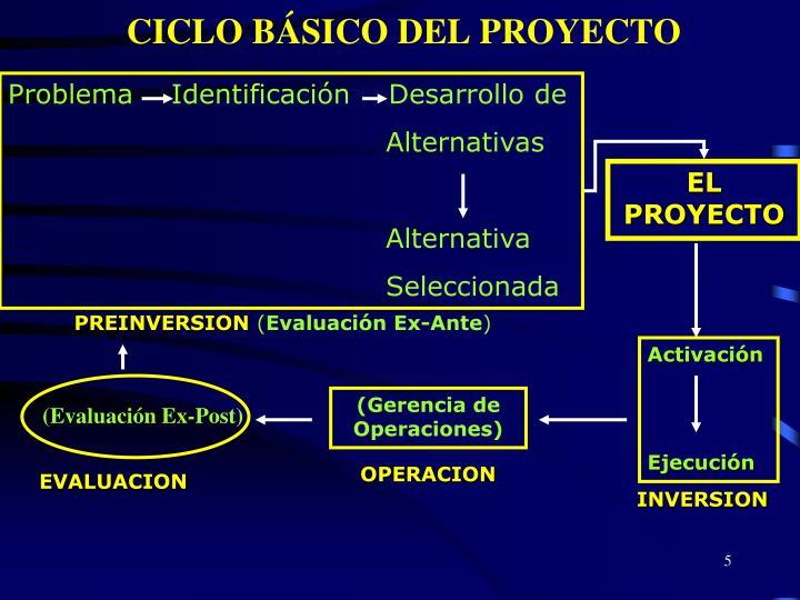 CICLO BÁSICO DEL PROYECTO