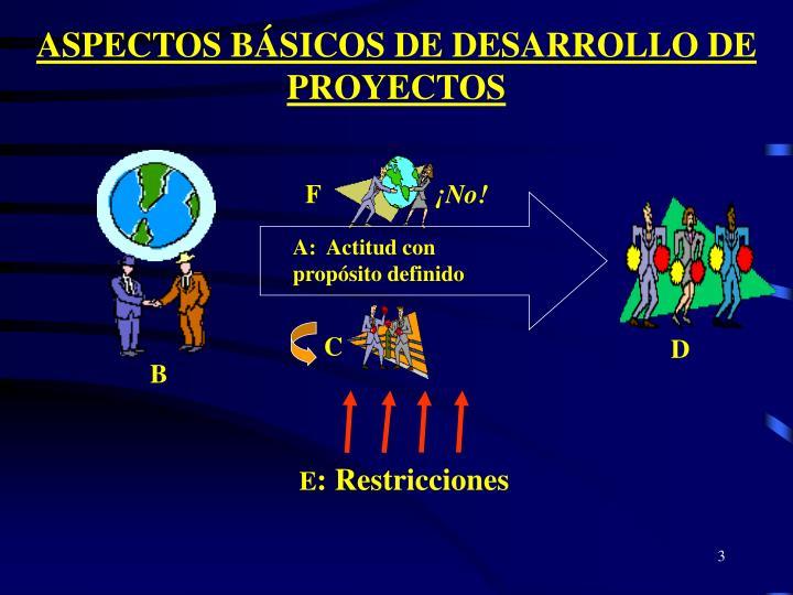 ASPECTOS BÁSICOS DE DESARROLLO DE PROYECTOS