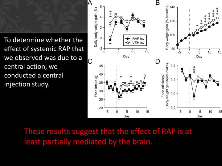 To determine whether the effect of systemic RAP that we observed was due to a central action, we conducted a central injection study.