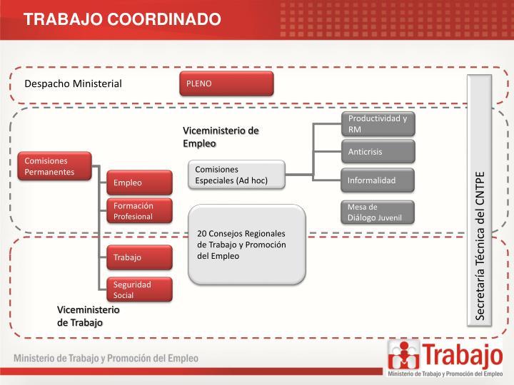 TRABAJO COORDINADO