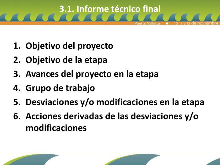 3.1. Informe técnico final