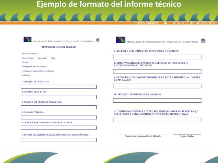 Ejemplo de formato del informe técnico