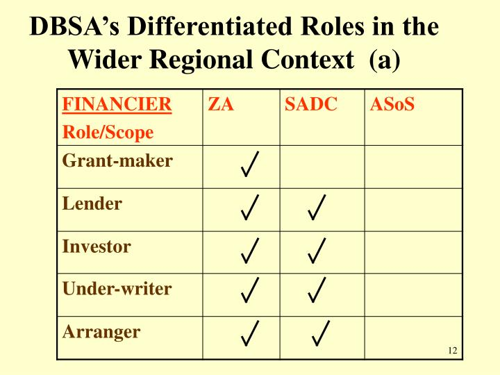 DBSA's Differentiated Roles in the Wider Regional Context  (a)