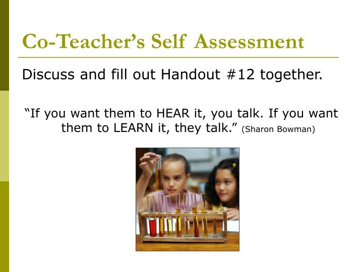 Co-Teacher's Self Assessment
