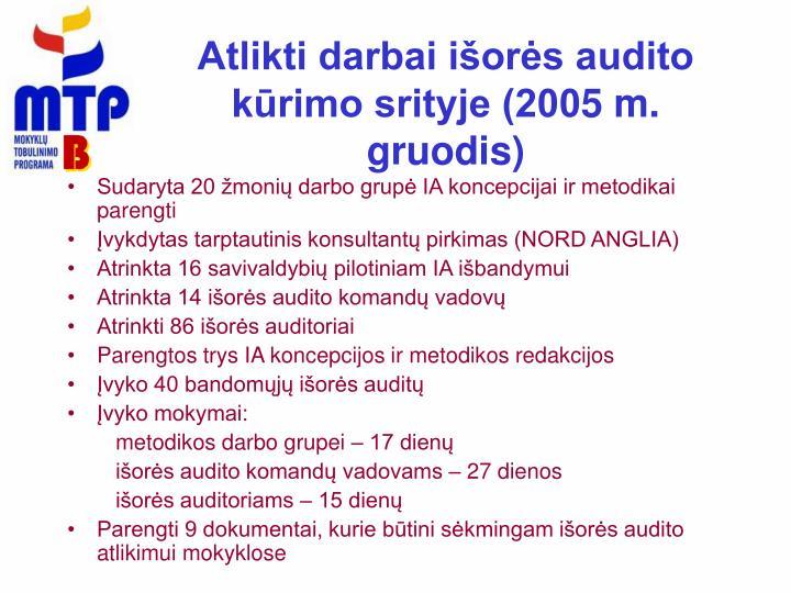 Atlikti darbai išorės audito kūrimo srityje (200