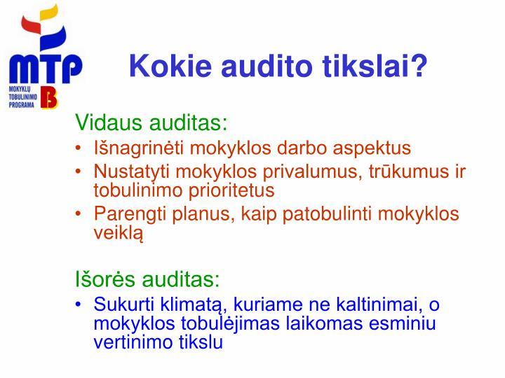 Kokie audito tikslai?