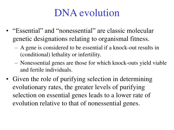 DNA evolution