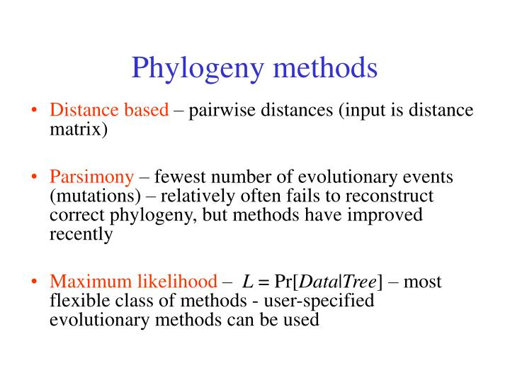 Phylogeny methods