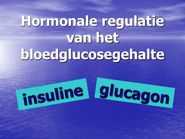 Hormonale regulatie van het bloedglucosegehalte