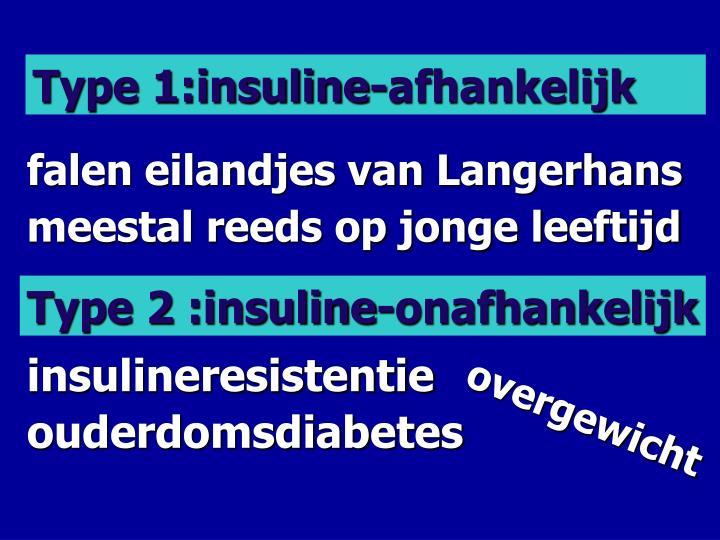 Type 1:insuline-afhankelijk