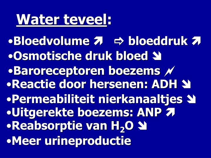 Water teveel